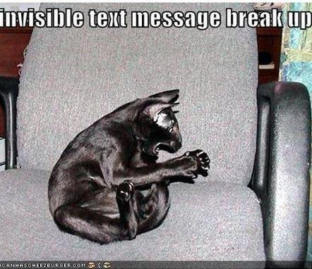 tekstari ero kissa