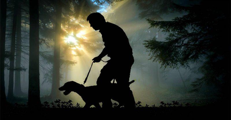 Koiran Käyttö Hirvenmetsästyksessä